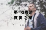 堅‧河國榮 x 救狗之家